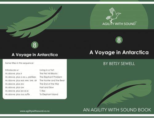 A Voyage in Antarctica