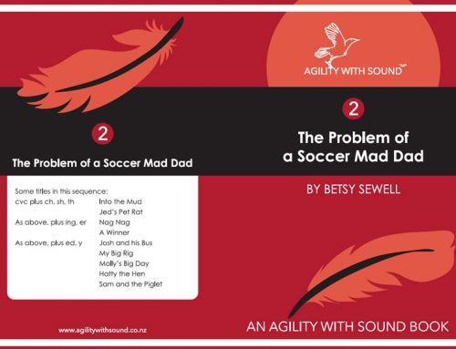 The Problem of a Soccer Mad Dad