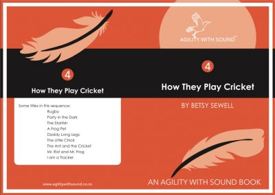 How They Play Cricket