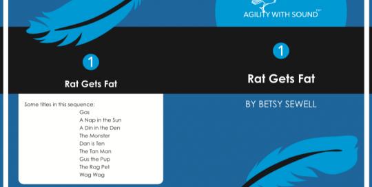 Rat Gets Fat
